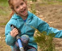 an photo of a young girl planting a seedling