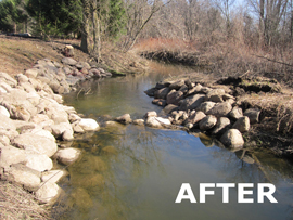 """After"" picture of naturalized shoreline with small bolders lining the once eroding stream bank"