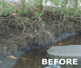 """Before"" picture of eroding stream banks"