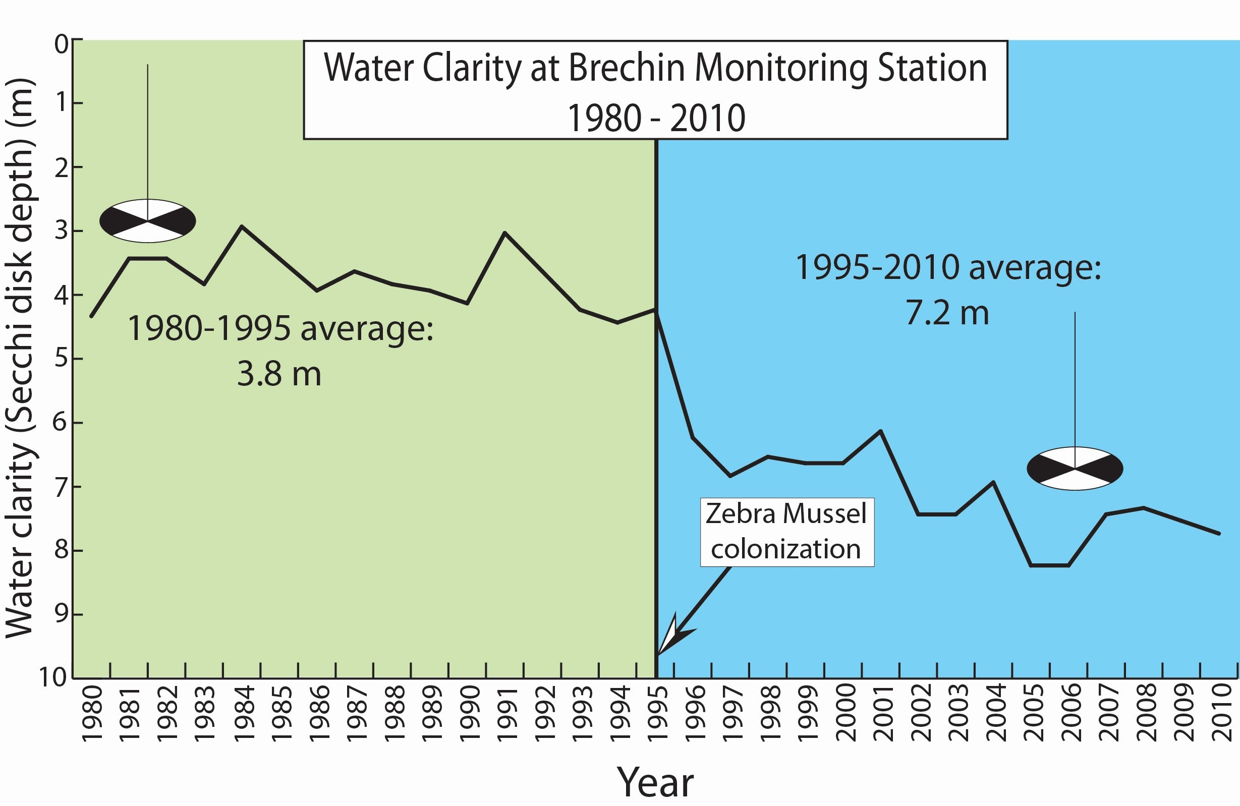 A graph showing water quality at Brechin Monitoring Station. Clarity increases after zebra mussel colonization.