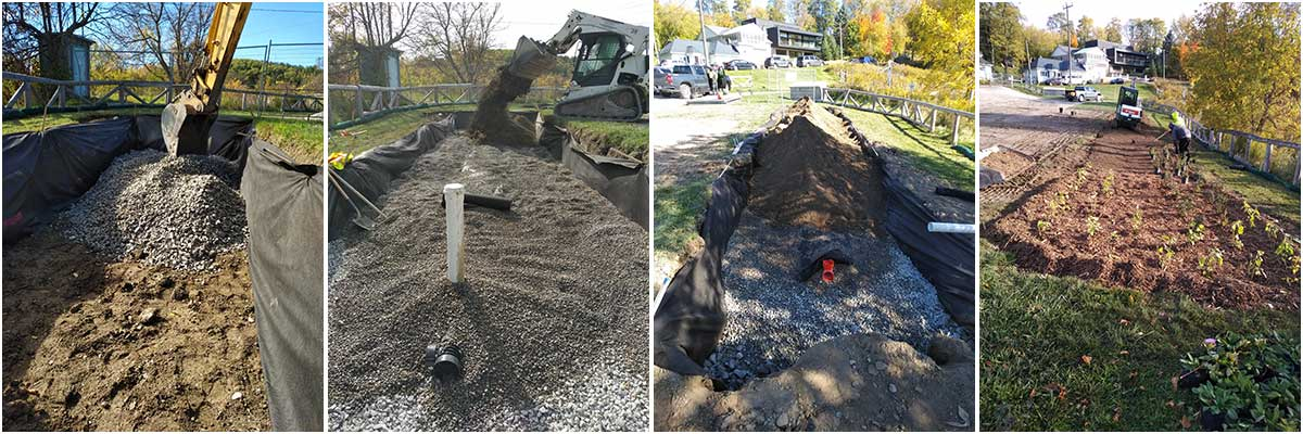 The progress of building the bioswale in four photos, from digging the swale, to planting native plants.