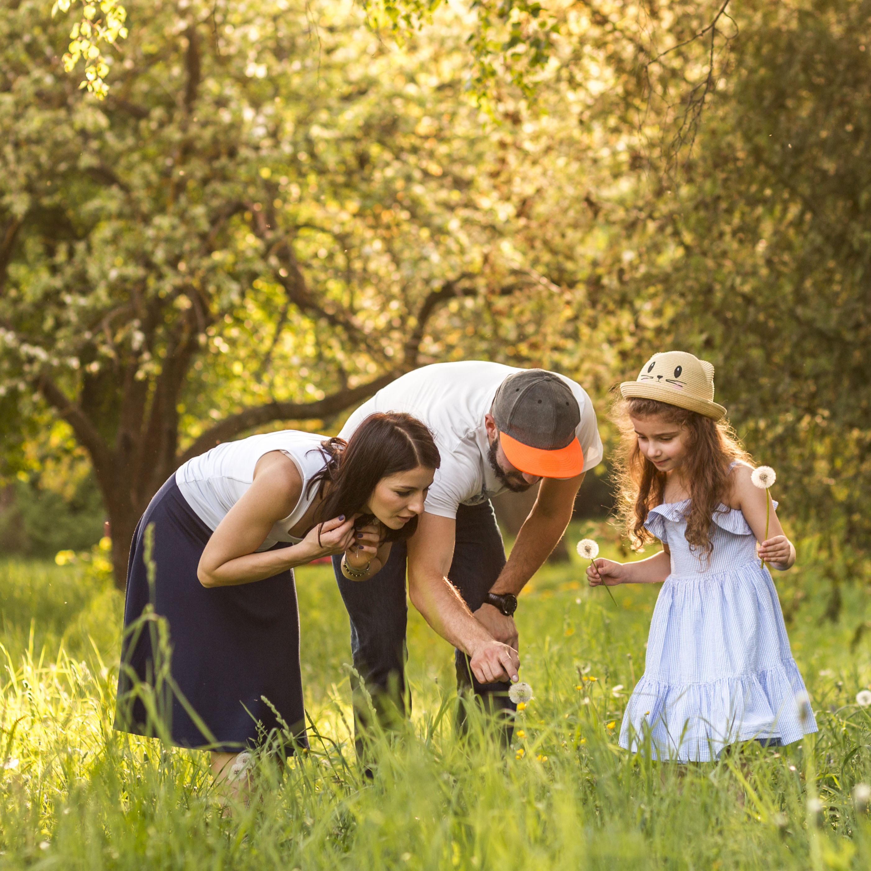 Family in a field looking at dandelion fluff