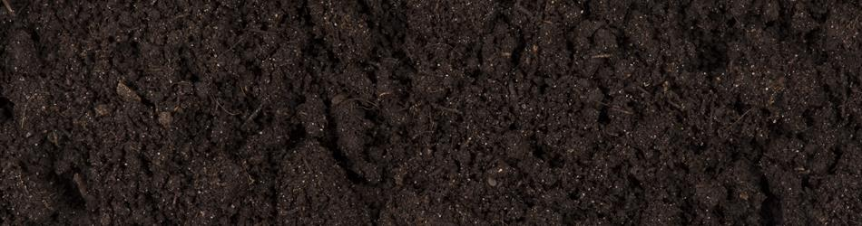 A picture of soil