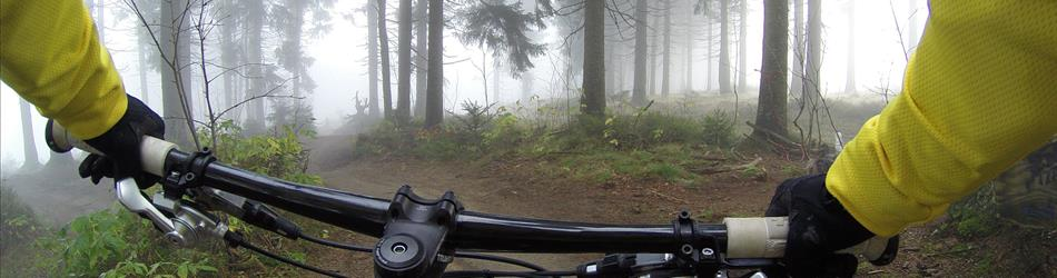 a photo of handlebars on a bike, with someone riding on a forest trail