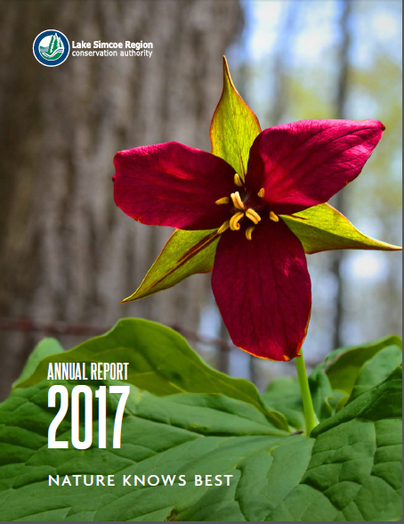 2017AnnualReportCover.PNG