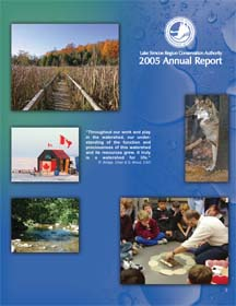 2005 Annual report cover