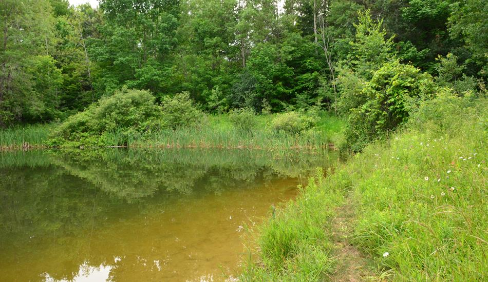 Whitchurch - Lake Simcoe Region Conservation Authority